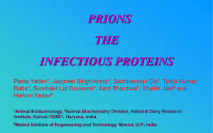 PRIONS THE INFECTIOUS PROTEINS