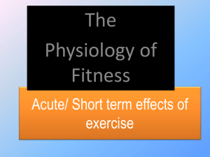 Musculoskeletal system - Responses to exercise PPT