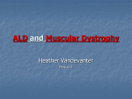 ALD and Muscular Dystrophy
