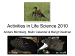 Activities in Life Sciences 2010