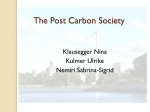 The Post Carbon Society - Austrian Institute of Economic