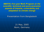 SBSTA`s five-year Work Program on the scientific, technical and