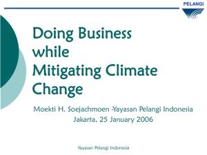 Doing Business while Mitigating Climate Change