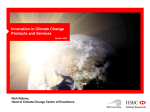 Innovation in Climate Change: Financial Products and Services