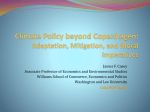 Climate Policy beyond Copenhagen