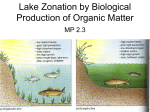 Lake Zonation by Biological Production