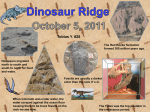 Toby`s Dinosaur Ridge Project