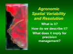 Agronomic Spatial Variability and Resolution 2001, 1st Lecture