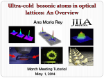 Atoms in Latices 1