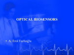Optical Biosensors (2003)