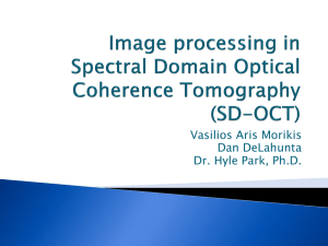 Image processing in Spectral Domain Optical Coherence