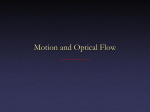 Motion and Optical Flow
