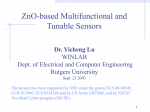 ZnO-based Multifunctional and Tunable Sensors