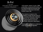 Lucio Piccirillo, Introduction: Previous BPol instrumental design