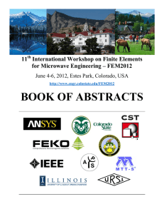 BOOK OF ABSTRACTS  11 International Workshop on Finite Elements