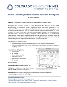 Hybrid Dielectric/Surface Plasmon Polariton Waveguide P. David Flammer