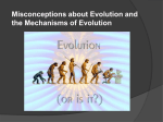 Misconceptions about Evolution