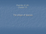 Diversity of Life Chapter 24