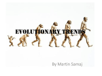 Evolutionary trends - Life is a journey: Mr. T finding his way