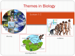 Themes in Biology - Sonoma Valley High School