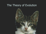 The Theory of Evolution2