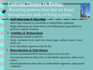 Unifying Themes in Biology Represent recurring patterns