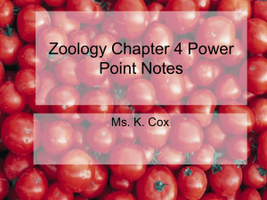 Zoology Chapter 4 Power Point Notes