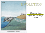 evolution - TeacherWeb