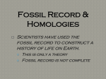 Fossil Record-Homologies-Mechanisms of Evolution Notes