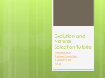 Evolution and Natural Selection Tutorial