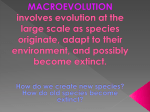 macroevolution involves evolution at the large scale as species