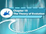 Chapter 15 The Theory of Evolution