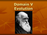 Domain V Evolution