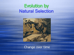Evolution_ppt
