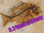 Phylogeny and Systematic - Effingham County Schools