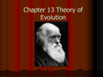 Chapter 13 Theory of Evolution Darwin