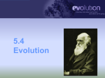 5.4 Evolution - Cloudfront.net