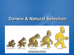 Darwin & Natural Selection