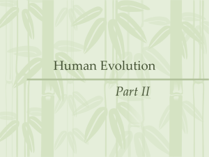 Human Evolution - Emmanuel Biology 12