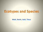 Ecotypes and Species