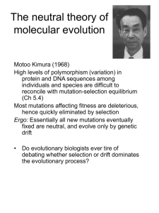 Null hypotheses in evolutionary biology