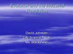 Evolution and the Industrial Revolution