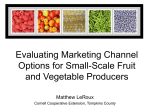 Marketing Channels and Small Farms