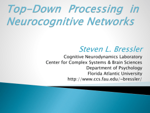 Top-Down Processing in Neurocognitive Networks