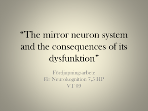 The mirror neuron system and the consequences of its