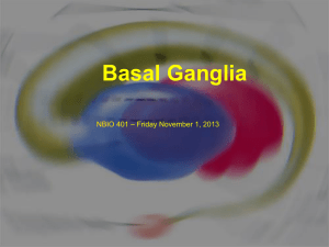 Basal Ganglia objectives - NBio401