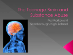 Drugs and Teen Brain_12