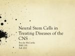 The Link Between Stem Cells and Brain Tumors
