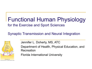 Functional Human Physiology for the Exercise and Sport Sciences