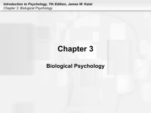 Introduction to Psychology, 7th Edition, James W. Kalat Chapter 3